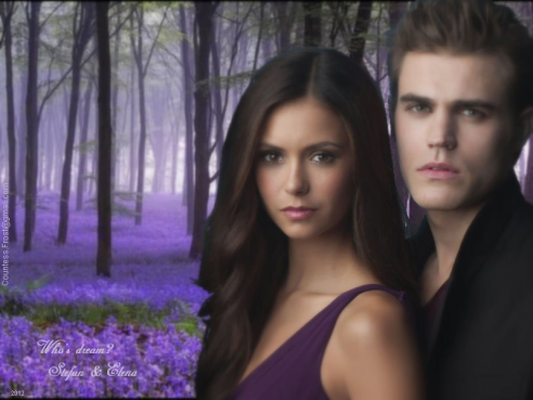 Who-s-dream-Stefan-Elena-the-vampire-diaries-tv-show-29462087-800-600